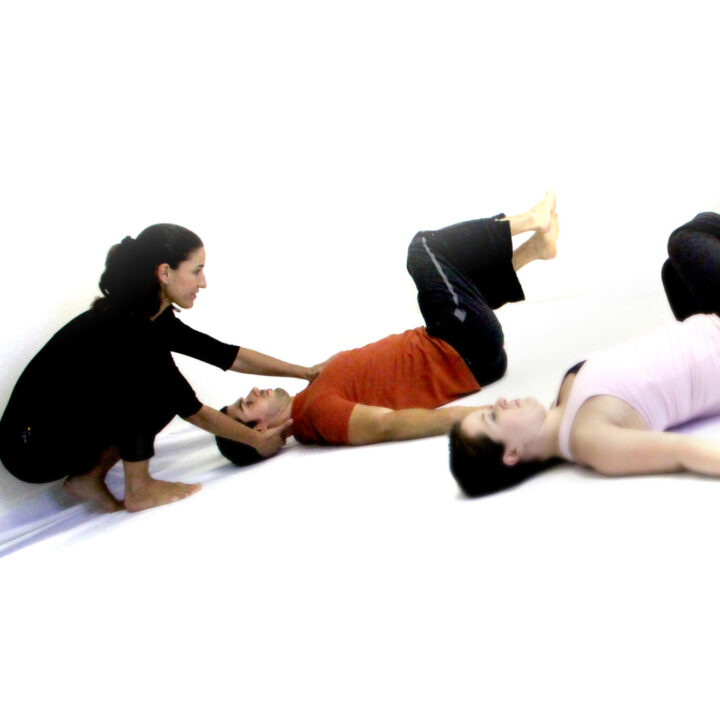 Pilates Gateway, Online (Polestar Pilates)